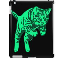 Ghost Cat in Mint iPad Case/Skin
