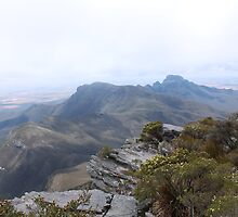 View from Bluff Knoll as the fog lifts looking east by RickLionheart