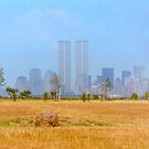 Twin Towers and Hay  by Danny  Daly