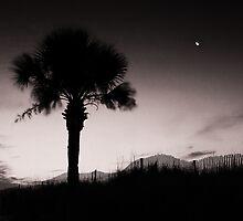Myrtle Beach 1 by Doug Brodke