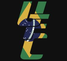 UFC Rio Flag by DarkLord1st