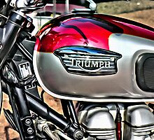Triumph by Paul Stevens