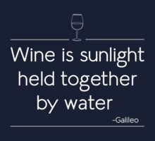 Wine is sunlight held together by water by partyanimal