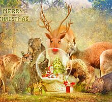 Capturing The Christmas Spirit by Trudi's Images