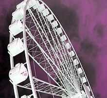 Purple Ferris by Danielle LaBerge