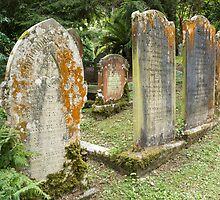 gravestones by Anne Scantlebury