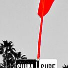 Look For The Swim Surf Sign by Rebecca Dru