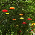 Umbrella Invasion! by Vincent Abbey