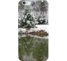snowy reflections iPhone Case/Skin
