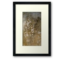 detail/ In the clearing and the mist . . .  Framed Print
