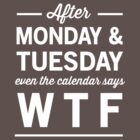 After Monday and Tuesday even the calendar says WTF by artack