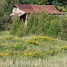 Rusty Roof and Wildflowers by Tracy Faught