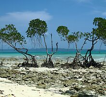 """The mesmerising beauty of Andaman # 3"" by debjyotinayak"
