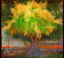 lovely tree  by terezadelpilar~ art & architecture