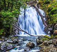 Waterfall At Cadair Idris by Paul Madden
