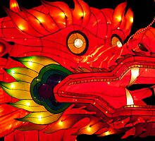Chinese Dragon  Lantern by DowdellPhoto