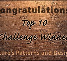 NPAD top 10 banner by Celeste Mookherjee