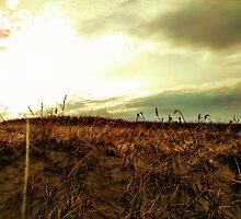 Dunes - Ogunquit, Maine by BrittneyMarie83