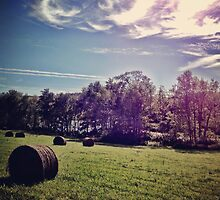 Upstate Hay by BrittneyMarie83