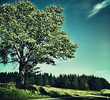 Upstate Road & Tree by BrittneyMarie83