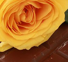 Yellow Rose and Chocolate by rhamm