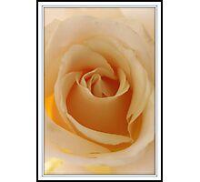 Enchanted Photographic Print