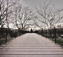 Bridge in Cederbrae Park, Scarborough by Daniel Judah