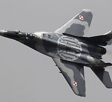 Mig 29 by Malcolm  Maggs