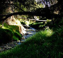 Cumanda Creek In Cuenca by Al Bourassa