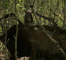 Abandoned Car in a Forest by rhamm