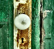 The Green Door by Sheri Nye