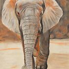 Portrait Of An Elephant by jmfischer