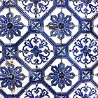 Portugal Tile Number Twenty Four by Michael Kienhuis