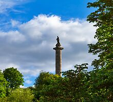 ELGIN - THE DUKE IN SUMMER by JASPERIMAGE
