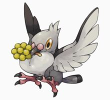 Pidove by Pokeplaza