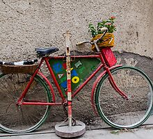 Multifunctional bike by borjoz