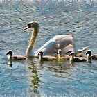 Swan with young by RicIanH