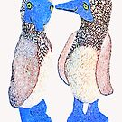 Blue Footed Boobies by Ginny Luttrell