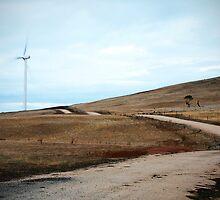 Lone Wind Turbine by Rob Chiarolli