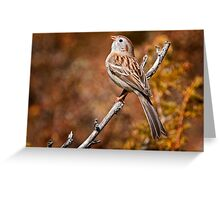 Field Sparrow Greeting Card