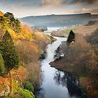 Elan Valley, Mid Wales in Autumn by Heidi Stewart