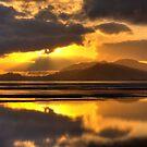 Bushland Beach by Stephen  Nicholson