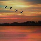 SEPTEMBER SKY by TOM YORK