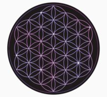 Flower of Life - Pink to Purple by haymelter