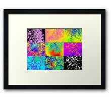 Andy Warhol style tree images, digital photos by Catherine Jacobs Framed Print