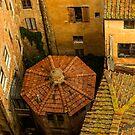 Siena roofs by borjoz