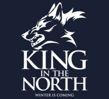 King in the North by innercoma