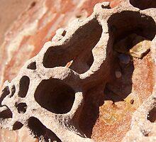 Rock Cavity by mawaho
