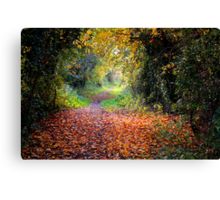 The Old Railway Line Canvas Print