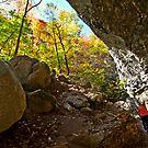 Eden Falls Canyon by Lisa G. Putman